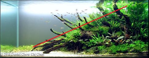Refonte aquarium Aquasc10