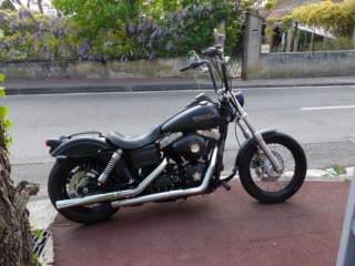 Guidon fat-bob  Bob_210