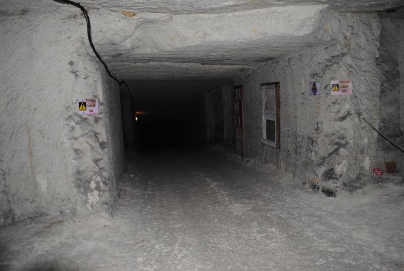 [ Histoires et histoire ] Les Caves Monmousseau de Montrichard -  Histoire vécue en juin 1940 - Page 2 Dsc_0110