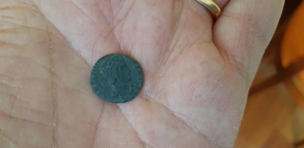 identification nummus Nummus11