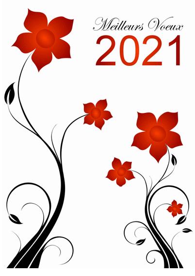 Bonne et heureuse année 2021 Meille10