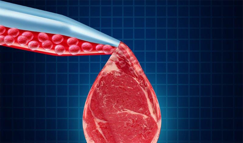 Что мы будем есть вместо мяса в 2035 году D-kc_z10