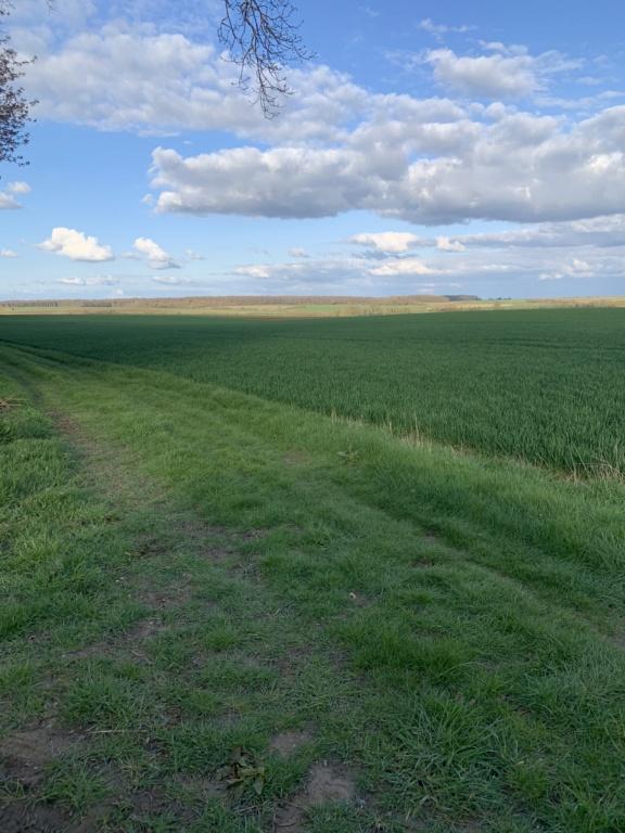 suivi blé 2021 - Page 5 580f6010