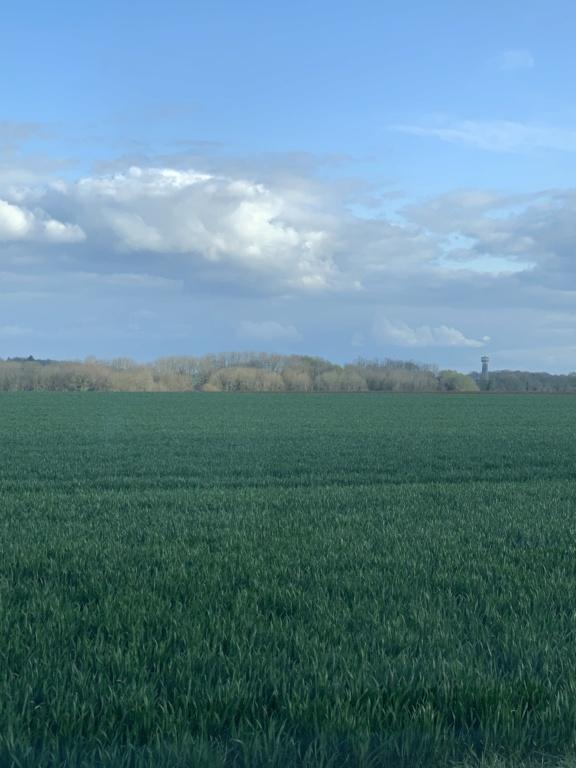 suivi blé 2021 - Page 5 D070f310