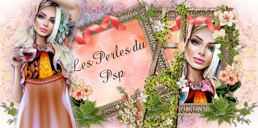 Les Perles du P.S.P