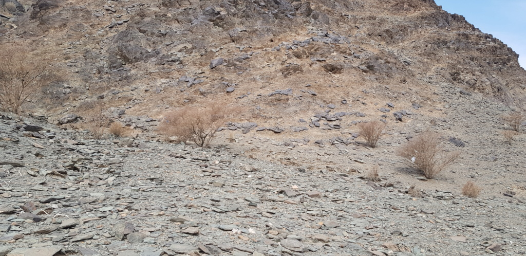 جرن شكل مربع على صخره مع سيال وجرون Eeeeee17