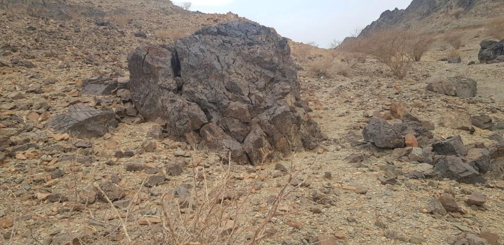 صخرة على شكل جمل بارك ودجاجة وسلحفاة وثعبان  Eeeeee27