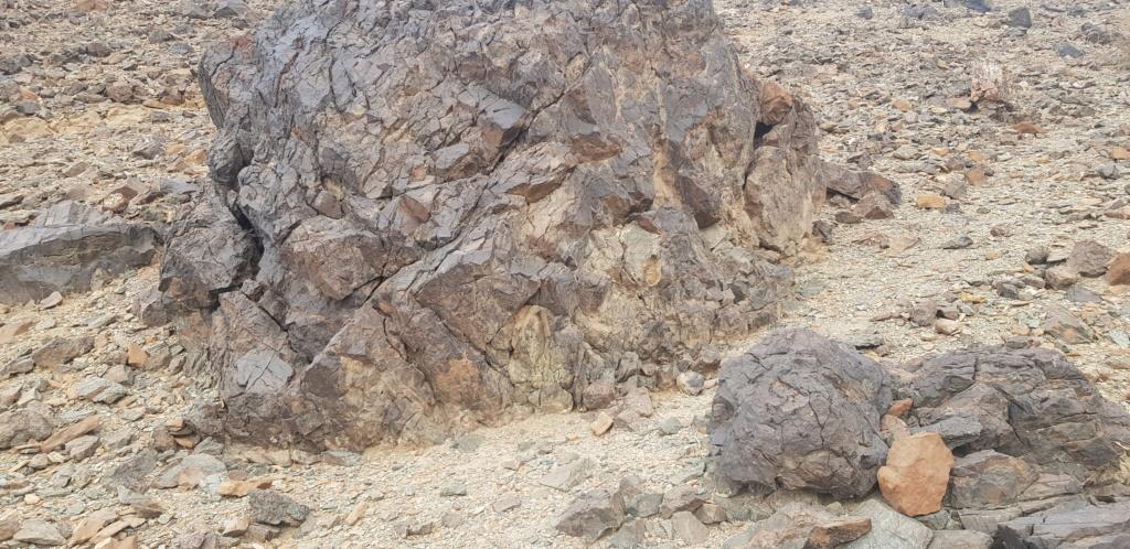 صخرة على شكل جمل بارك ودجاجة وسلحفاة وثعبان  Eeeeee28