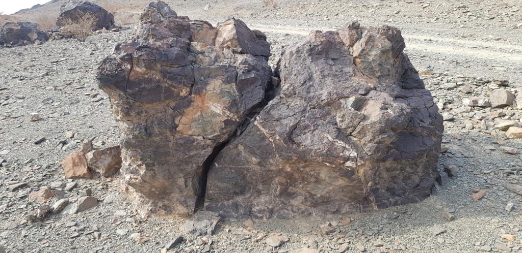 صخرة على شكل جمل بارك ودجاجة وسلحفاة وثعبان  Eeeeee32
