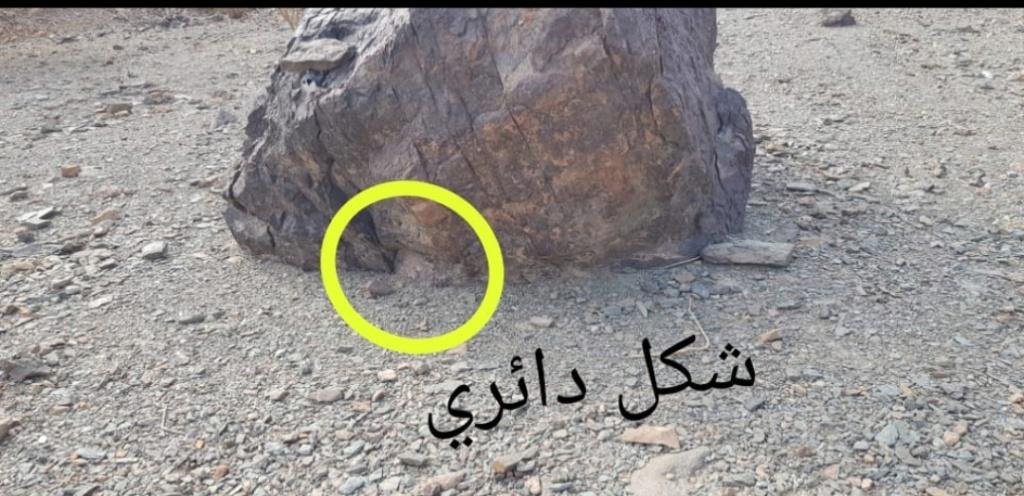 صخرة على شكل جمل بارك ودجاجة وسلحفاة وثعبان  Eeeeeo10