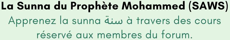 2.2 Le prophète Mohammed [SAWS] Captu258