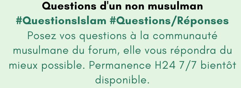 0.1 Questions d'un non musulman Captu291