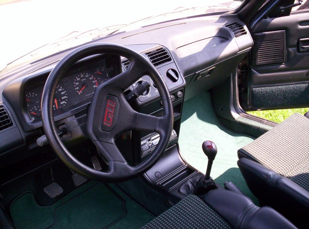 [58] 205 GTi 1L9 - 130cv - AM91 - Vert Sorrento - sous le soleil !!! 100_0714