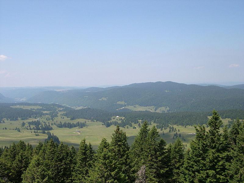 [39] La Montagne Jurassienne - 16 et 17 juillet 2011 800px-10