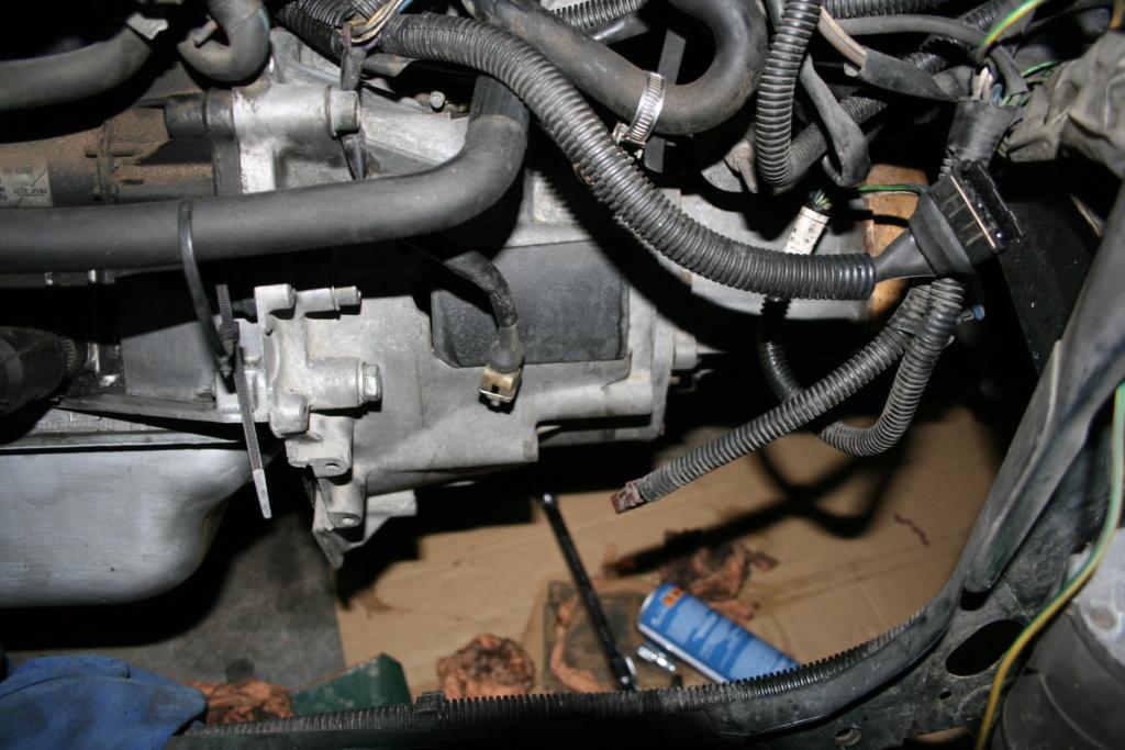 [58] 205 GTi 1L9 - 130cv - AM91 - Vert Sorrento - sous le soleil !!! - Page 2 Img_0615