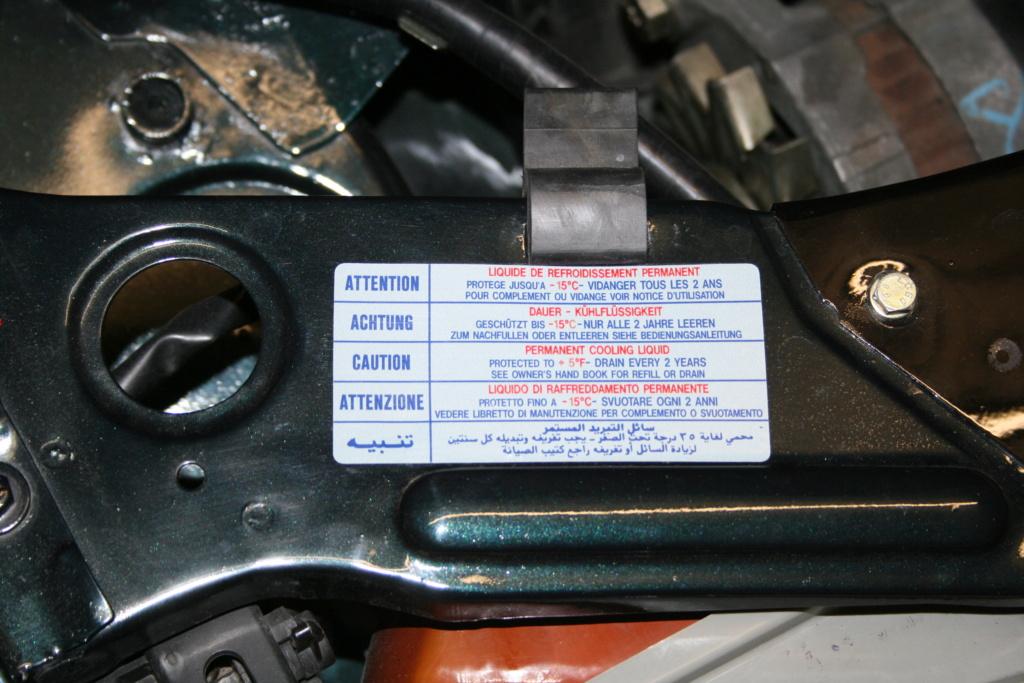 [58] 205 GTi 1L9 - 130cv - AM91 - Vert Sorrento - sous le soleil !!! - Page 2 Img_4116