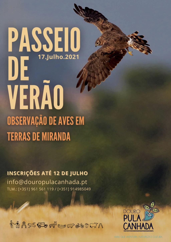 PASSEIO DE VERÃO 2021 - Observação de Aves em Terras de Miranda Cartaz11
