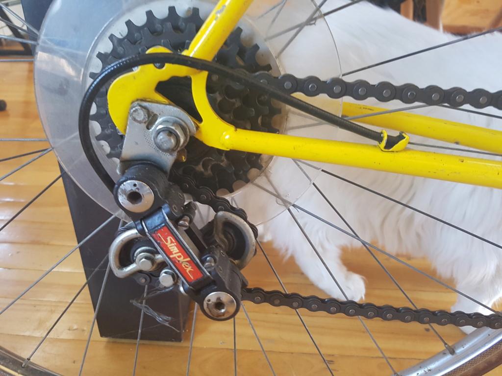 Motobecane special sport 20210410