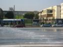 Déplacement de la station Tram Université Img_0114