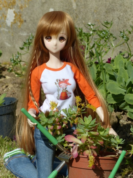 [Smart Doll Mirai et Volks DDH06]  P1590810