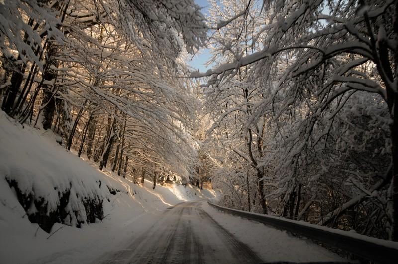 (photos hiver 2009/2010 ] postez ici Nik_3910