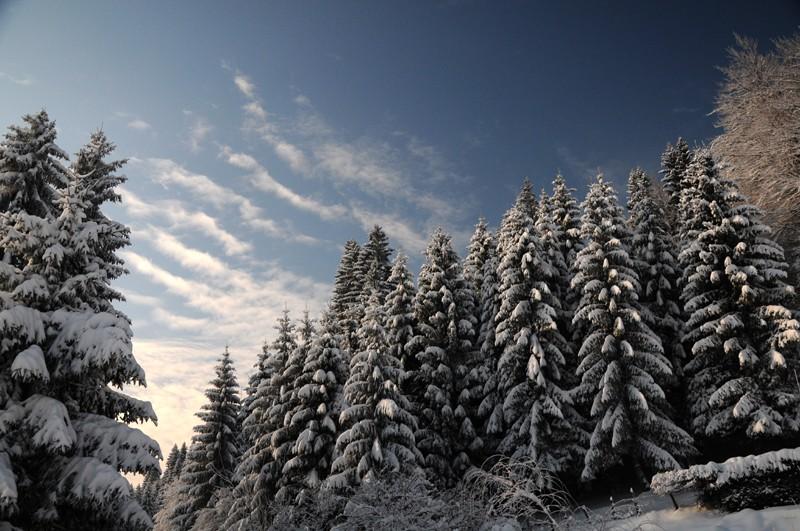 (photos hiver 2009/2010 ] postez ici Nik_4010