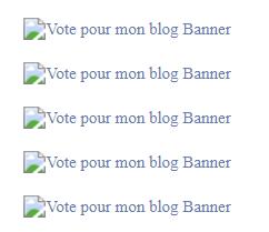 Vote pour mon blog Captur28