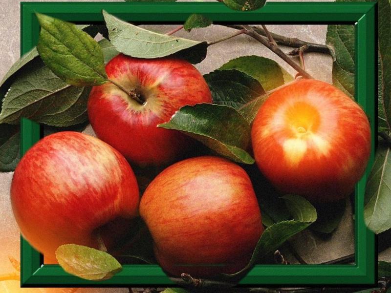 Les fruits et les légumes. - Page 2 8gxh3210