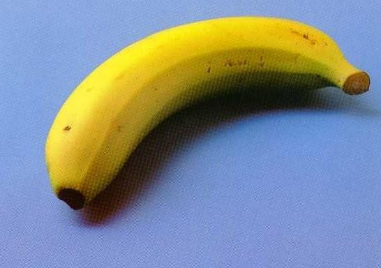 Les fruits et les légumes. Ihgsg910