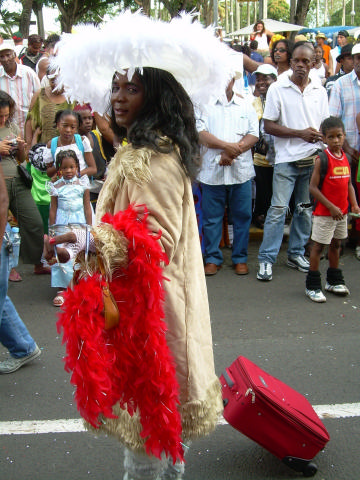 Dimanche Gras 18 Février 2007 !!! Vidé Multicolore !!! Parad130