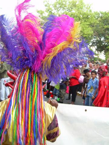 Dimanche Gras 18 Février 2007 !!! Vidé Multicolore !!! Parad153