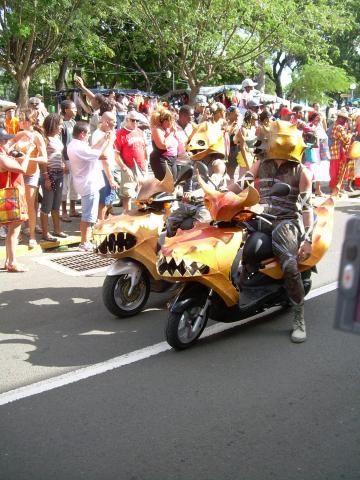 Dimanche Gras 18 Février 2007 !!! Vidé Multicolore !!! Parade12