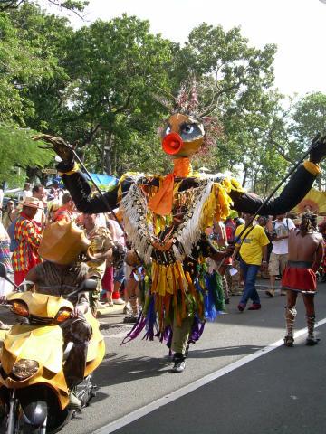 Dimanche Gras 18 Février 2007 !!! Vidé Multicolore !!! Parade13
