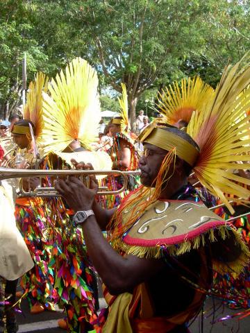 Dimanche Gras 18 Février 2007 !!! Vidé Multicolore !!! Parade17