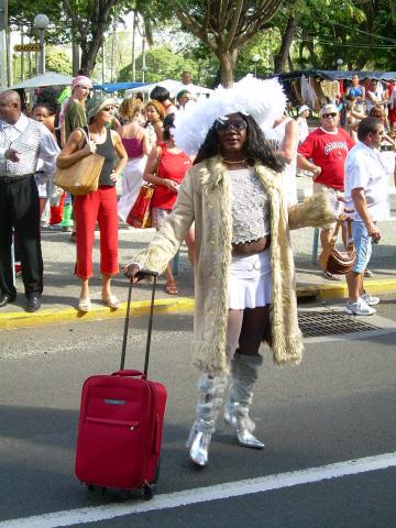 Dimanche Gras 18 Février 2007 !!! Vidé Multicolore !!! Parade22