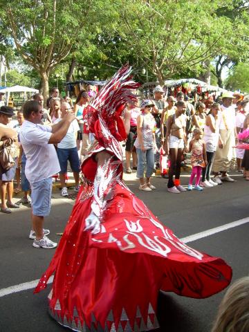 Dimanche Gras 18 Février 2007 !!! Vidé Multicolore !!! Parade37