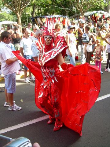 Dimanche Gras 18 Février 2007 !!! Vidé Multicolore !!! Parade40