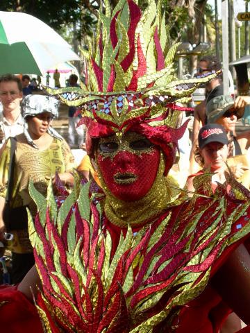 Dimanche Gras 18 Février 2007 !!! Vidé Multicolore !!! Parade43