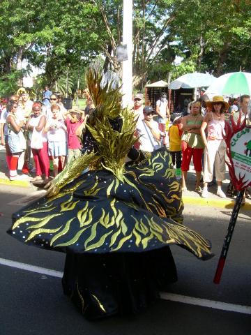 Dimanche Gras 18 Février 2007 !!! Vidé Multicolore !!! Parade45