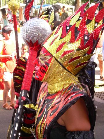 Dimanche Gras 18 Février 2007 !!! Vidé Multicolore !!! Parade47