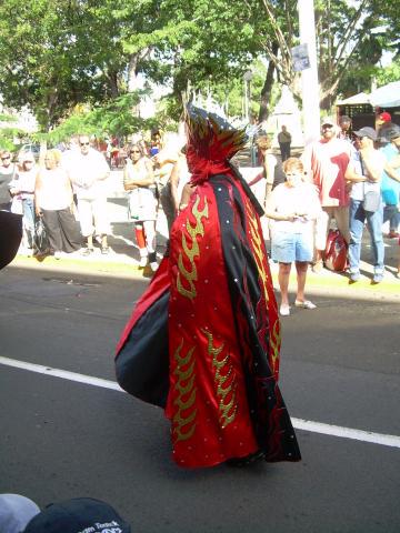 Dimanche Gras 18 Février 2007 !!! Vidé Multicolore !!! Parade49
