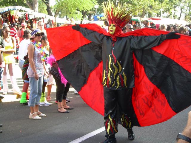 Dimanche Gras 18 Février 2007 !!! Vidé Multicolore !!! Parade50