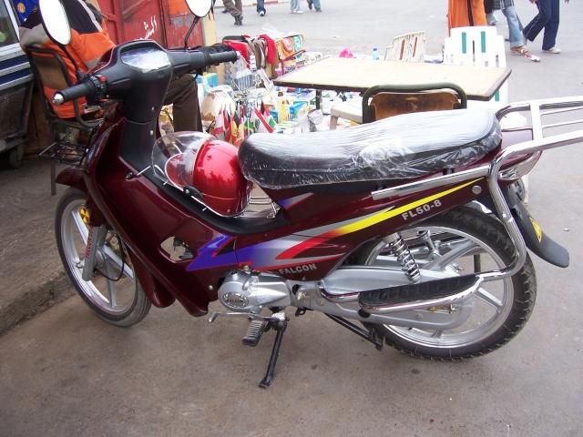 Cyclos Marocain 100_0613