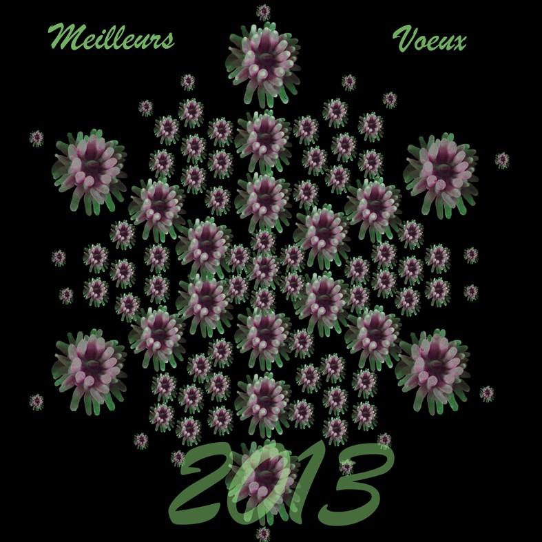 Bonne année amis jauberistes Voeux_10
