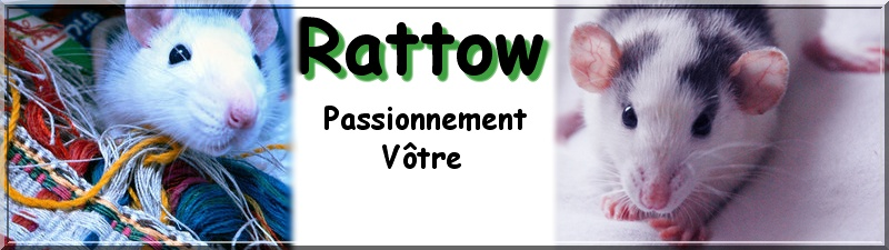 Rattow