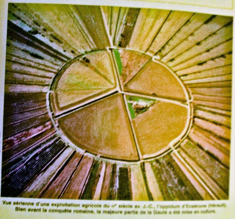 Defi image : Non d'un gallus!!!! (trouvé) - Page 3 Mon_ta10