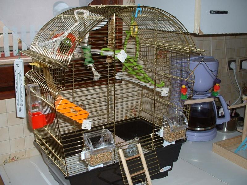 ma nouvelle cage Dscf0033