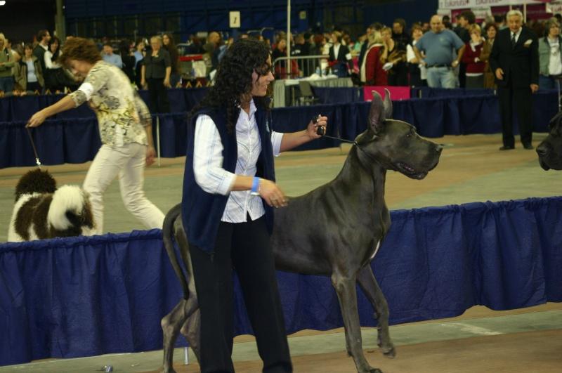 Salon national des animaux de compagnie (SNAC) - Page 4 Photo_17