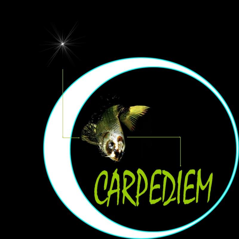 Vetements CARPEDIEM Logo_c11