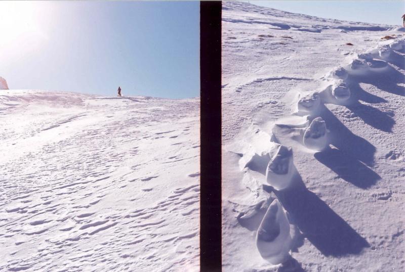 les Alpes, comme d'habitude Yeti10